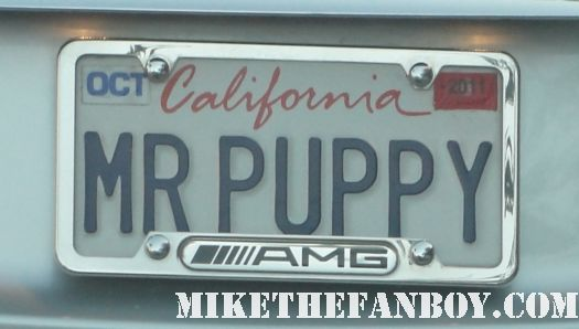 mister puppy license plate car mr puppy dog lover rare license plate lol funny
