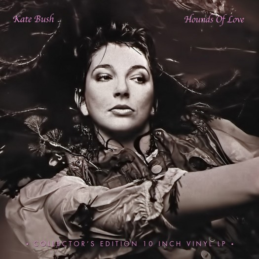 "kate bush hounds of love collector's edition record store day limited edition 10 inch 10"" vinyl"