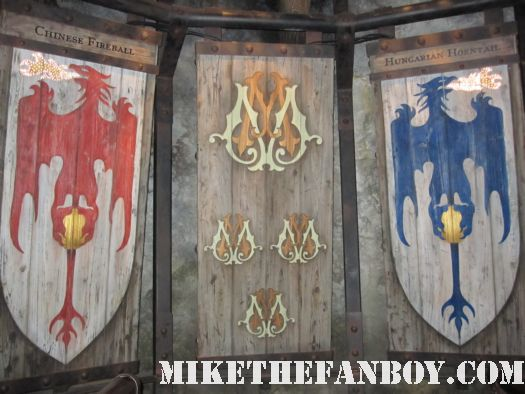 choice of dragon's at the wizarding world of harry potter at universal studios orlando florida