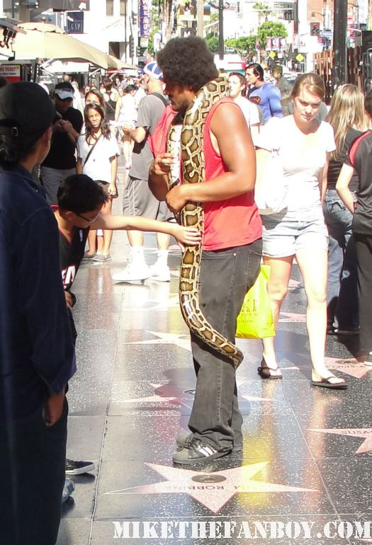 A man holding a live snake walking the streets of hollywood taking photos with tourists at the horrible bosses world movie premiere