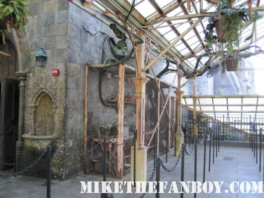herbology  at the wizarding world of harry potter at universal studios orlando florida