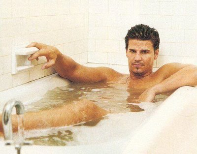 david boreanaz shirtless naked sexy hot muscle abs laying in a bathtub hot rare promo buffy the vampire slayer bones rare shirtless naked sexy wet