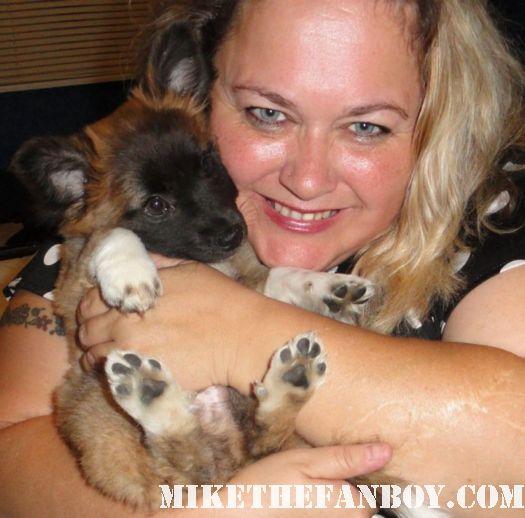 pretty in pinky's dog sammy rhodes rare puppy cute adorable mix smurf celebrity puppy