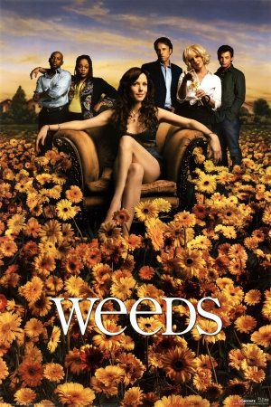 weeds season 2 rare promo poster mary louise parker showtime series hot rare promo justin kirk elizabeth perkins