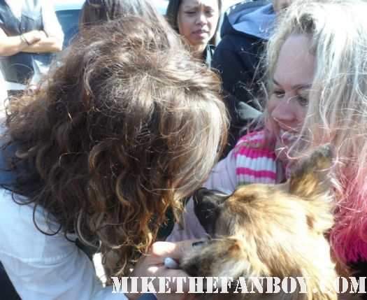 steven tyler kissing pinky's dog sammy rhodes at a charity event aerosmith rare promo candid photo