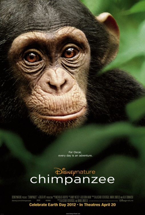 disneynature's newest film chimpanzee promo one sheet movie poster promo oscar the chimp rare promo hot walt disney nature