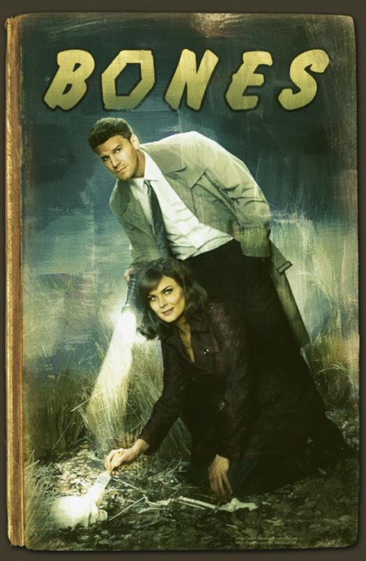bones-1 rare promo san diego comic con 2012 promo poster emily deschanel david boreanaz hot sexy rare promo noir poster fox