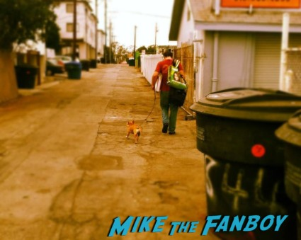 Mike the Fanboy with Theo the cutest french bulldog ever walking down the ally brown bulldog cute rare