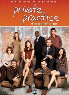 private practice season 5 rare promo dvd key art press promo still hot rare grey's anatomy season 5 press promo cast photo hot sexy rare KATE WALSH as addison from private practice season 5 press promo still hot sexy grey's anatomy star rare BRIAN BENBEN, KADEE STRICKLAND, PAUL ADELSTEIN, CATERINA SCORSONE, KATE WALSH, TAYE DIGGS, BENJAMIN BRATT, AMY BRENNEMAN, TIM DALY