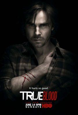 sam trammell true blood season 2 promo individual promo poster rare hot sexy sam merlotte sexy rare shapeshifter true blood sexiness