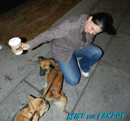 mike the fanboy's liz with theo the adorable french bulldog brown short hair soft and sammy rhodes