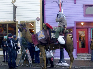 a camel walking down main street at the  sundance film festival 2013  rare promo photo hot