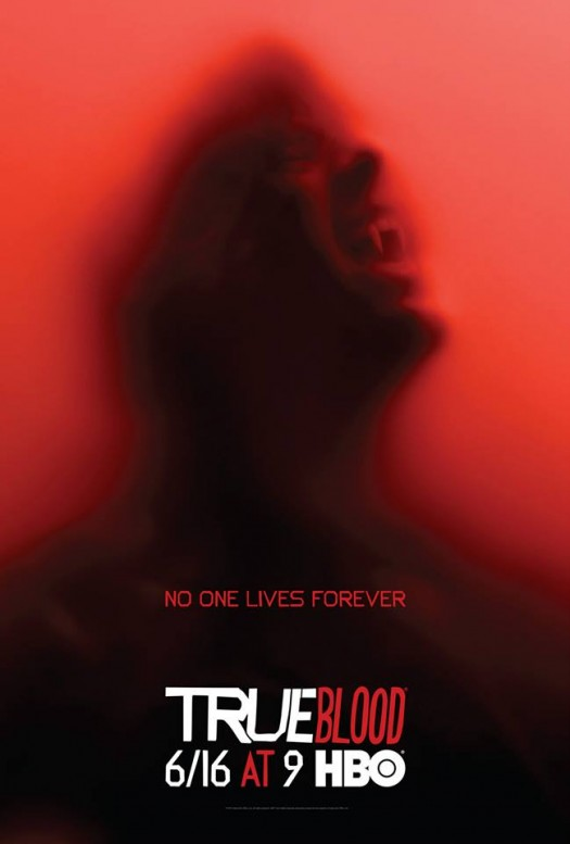 true blood season 6 promo poster stephen moyer rare bill compton hot HBO