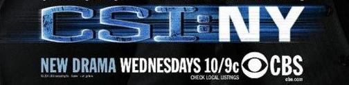 CSI NY logo promo movie poster anjelica huston rare cancelled nbc series