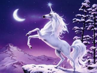 a glowing unicorn photo rare