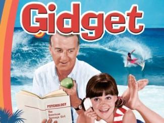 Sally Field Gidget rare poster cast photo dvd cover art rare