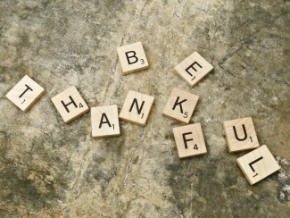 be thankful gif rare