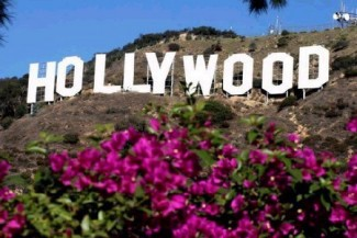 hollywood-sign-pink-flowers