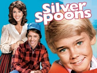 silver spoons lunchbox