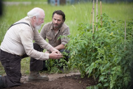 Walking Dead season 4 (6)