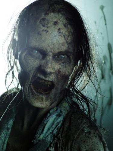 Walking Dead (3)