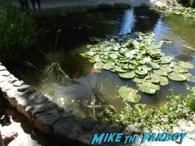 lily pond serenity filming Huntington Gardens filming locations iron man 2 legally blonde parks and recreation 1