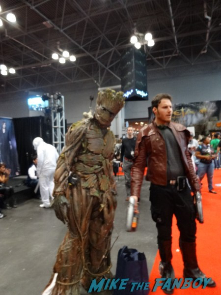 NYCC 2014 cosplay (37)