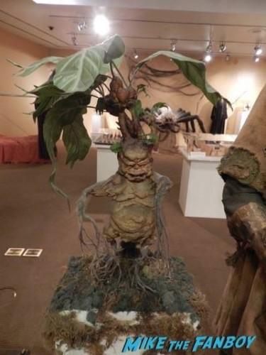 Warner Bros Harry Potter  prop and costume display musuem 23