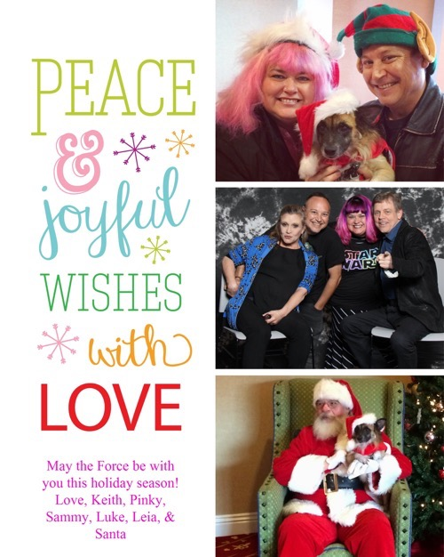 pinky christmas card 2015