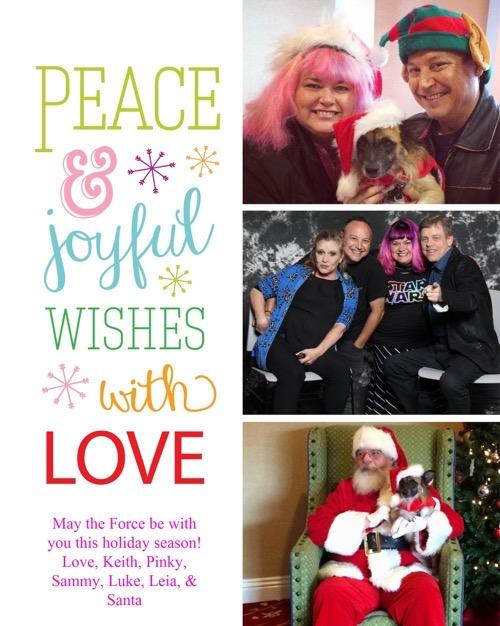 pinky christmas card 2015