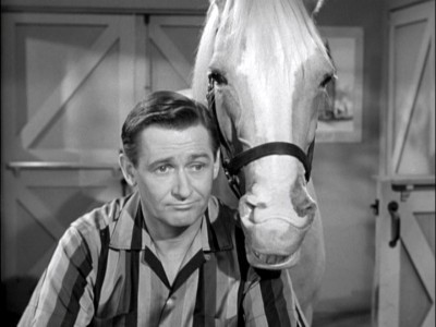 mr ed alan young