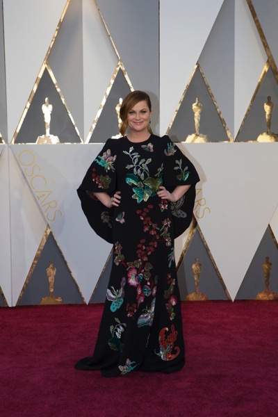 THE OSCARS(r) - ARRIVALS - The 88th Oscars, held on Sunday, February 28, at the Dolby Theatre(r) at Hollywood & Highland Center(r) in Hollywood, are televised live by the ABC Television Network at 7 p.m. EST/4 p.m. PST.  (ABC/Rick Rowell) AMY POEHLER