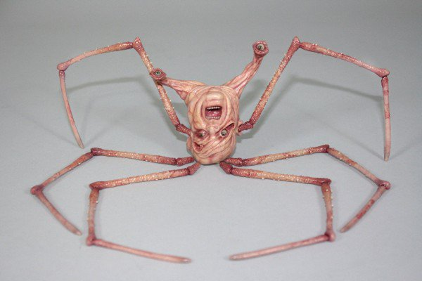 The-Thing-Norris-Spider-Creature-Teaser-600x400