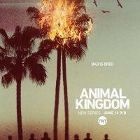 animal_kingdom season one promo poster key art