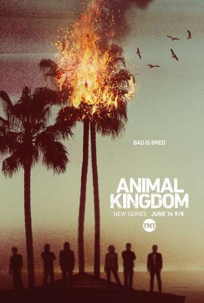 animal_kingdom season one promo poster key art