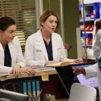 Grey's Anatomy: The Complete Twelfth Season