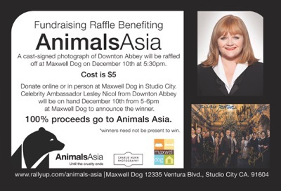 animals-asia-final-ad
