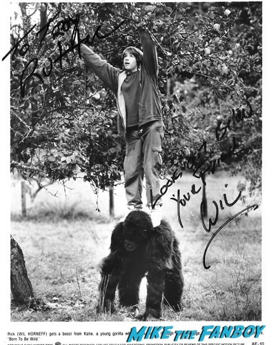 will horneff signed autograph photo rare psa