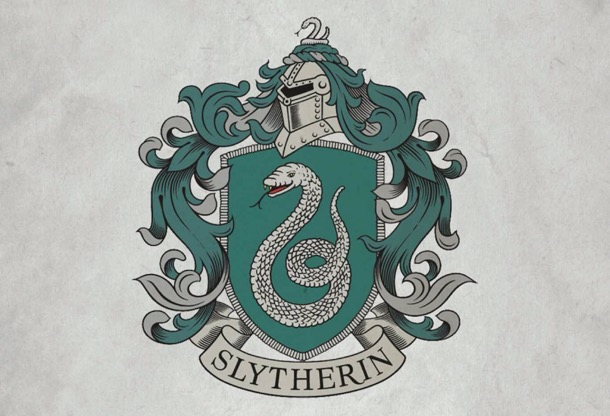 Insight Editions Harry Potter Journal slytherin 5