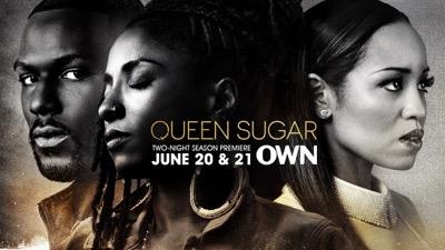 queen sugar fyc panel